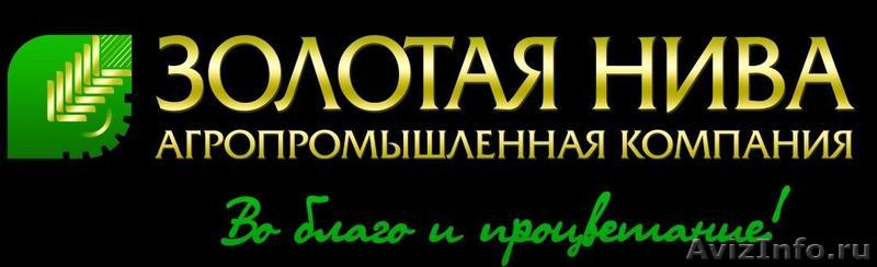 Запчасти для МТЗ продажа в Казани. Купить запчасти для.