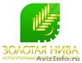 Механизм 80-1702010-02 управления МТЗ-1221