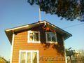 Строительство домов,  дач,  бань из дерева